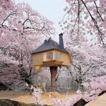En İnanılmaz 10 Ev Tasarımı
