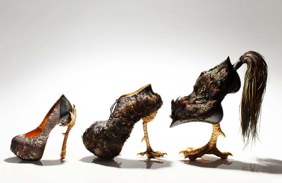 Şok Eden Bayan Ayakkabıları