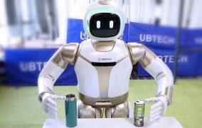 İnsansı Yardımcı Robot Walker